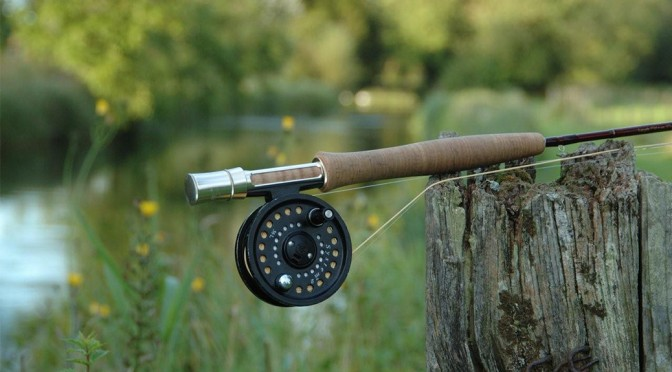 Fishing reel on tree stump by river.